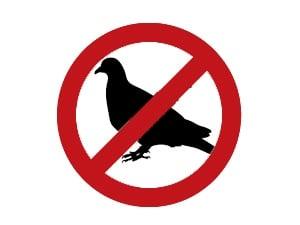 Απωθήσεις πτηνών