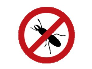 Απομάκρυνση μυρμηγκιών